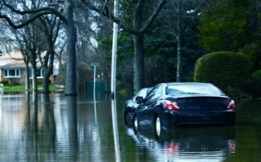 buy flood damaged car